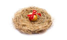 Golden egg. Stock Photography