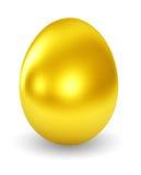Golden Egg. On white background Stock Images