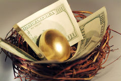 Golden egg. And money in a real nest. Shallow focus royalty free stock images