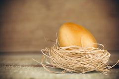Golden Egg. Animal Nest Nest Egg Treasure Achievement Easter Concepts Stock Images