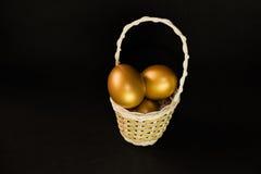 Golden egg in basket Stock Images