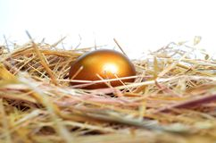 Golden Egg on a bed of golden straw. Golden Egg on a bed of straw shining bright Stock Image