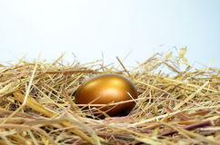 Golden Egg. On a bed of straw stock image
