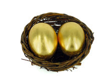 Golden egg in bird nest Stock Photo