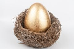 Golden egg in bird nest Royalty Free Stock Image