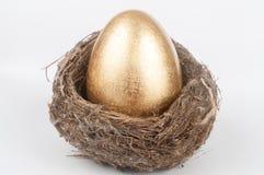 Golden egg in bird nest. A golden egg in the bird nest Royalty Free Stock Image