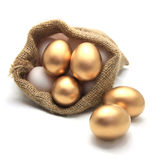 Golden egg. In canvas sack Royalty Free Stock Image