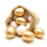 Golden egg in canvas sack Royalty Free Stock Photos