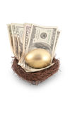 Golden Egg and Cash Stock Image