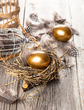 Golden egg of chickens in nest Stock Images