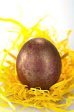 Golden egg. Close-up portrait of red and golden egg Royalty Free Stock Photo