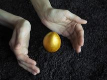 Golden egg in the hands of. The concept of a new life. Golden egg. The concept of a new life royalty free stock photo