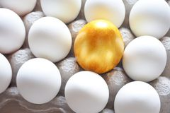 Golden egg in the hands of. The concept of a new life. Golden egg. The concept of a new life stock photos