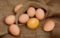 Golden egg different among the usual. Concept of Success on black Royalty Free Stock Image