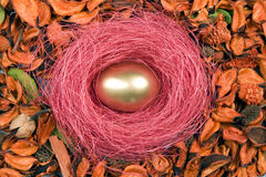Golden egg for Easter holiday Stock Image