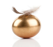 Golden egg and feather Stock Photos