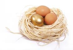 Golden egg finance concept. Golden egg shines in a nest Royalty Free Stock Photo