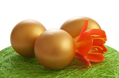 Golden egg with a flower Stock Image
