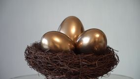 Golden Egg. Nest. Future Investment stock video