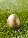 Golden egg on grass Stock Images