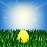 Golden egg on the green grass. Against the blue sky with the sun stock illustration