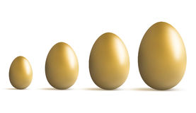Golden egg growing Stock Image