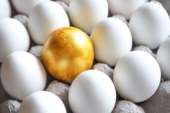 Golden egg in the hands of. The concept of a new life. Golden egg. The concept of a new life stock photo