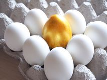 Golden egg in the hands of. The concept of a new life. Golden egg. The concept of a new life stock image
