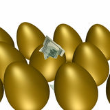 Golden Egg Hatching. With a hundred dollar bill poking out vector illustration
