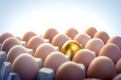 Golden egg among hen eggs Royalty Free Stock Photos
