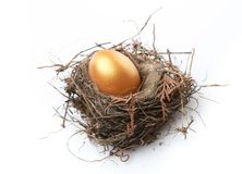 Free Golden Egg In Nest Isolated On White Background Stock Images - 108882624