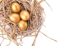 Golden egg inside a nest isolated on white background.  Stock Images