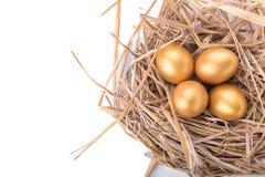 Golden egg inside a nest isolated on white background.  Stock Photos