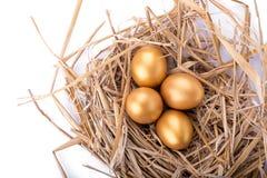 Golden egg inside a nest  on white background.  Royalty Free Stock Photo