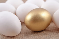 Golden egg and jast eggs Royalty Free Stock Photography