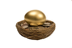 Golden Egg Laying On Coins In Nest Royalty Free Stock Image
