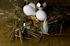 Golden egg and money. Golden eggs - not a fairy tale Royalty Free Stock Image