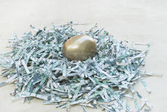 Golden Egg in Money Nest Royalty Free Stock Images