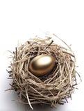 Golden Egg in the Nest. On the White Background stock image