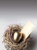 Golden Egg in the Nest Royalty Free Stock Photos