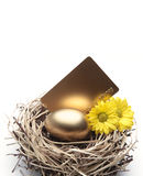 Golden Egg in the Nest. With Credit Card and Flowers royalty free stock images