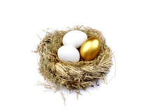 Golden egg in the nest Stock Photo