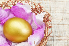 Golden egg in a nest. Royalty Free Stock Photo