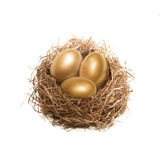 Golden egg nest Stock Image