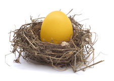 Golden egg in a nest. On white background Stock Photo