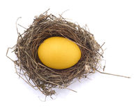 Golden egg in a nest. On white background Royalty Free Stock Photos