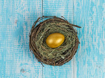 Golden egg in a nest. Stock Photo