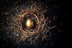 Golden egg in nest Royalty Free Stock Photography
