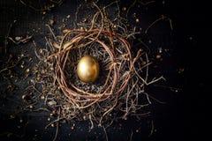 Golden egg in nest. On dark vintage wooden background royalty free stock photography