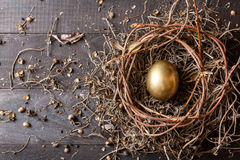 Golden egg in nest Stock Image